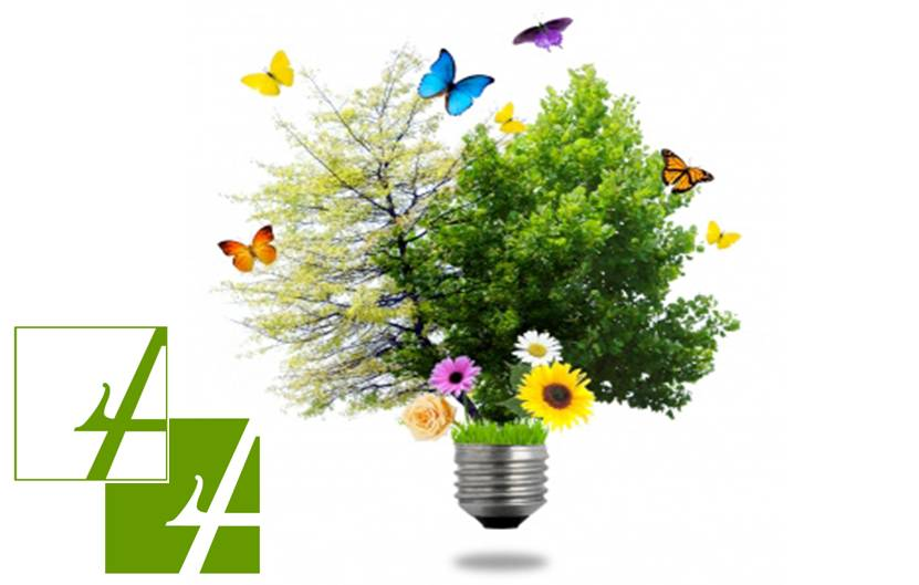 home ambiente energia